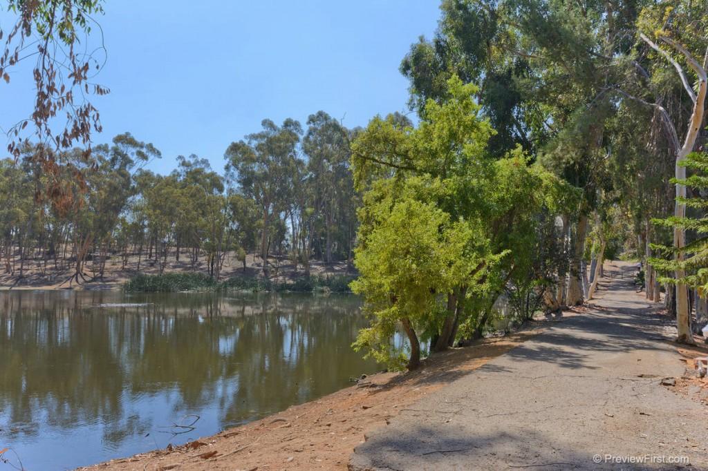Pond walkway